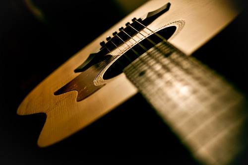 taylor-acoustic-guitar-photography-3834395540-2dd1cf2aed